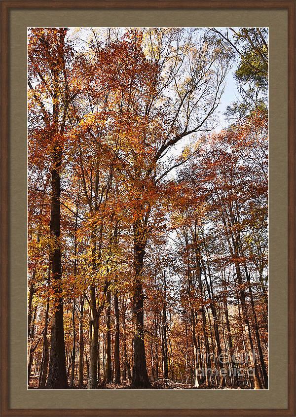 Art for Sale SHOP HERE: https://t.co/LA8ic4nwV4 #artsale #sale #fineart #homedecor #dormdecor #wallart #typography #inspirational #minimalism #onlineshopping #buyart #artforsale #quotes #minimalist #shopsmall #fall #autumn https://t.co/yaZam9n9NK
