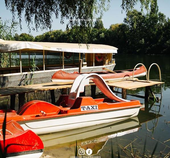 Pored brodice i kanua, moguće je iznajmiti i pedalinu za uživanje i zabavu po Velikom Bačkom Kanalu #putovanje #srbija #kanu  #slatko #veselje #sombor  #turizam #travel #vojvodina #vidisrbiju #seeserbia #domacikolaci #Welcome  #dobrodosli #rooms #sobe #smestaj #annacaffeandrooms https://t.co/o4vpdV5Ll7