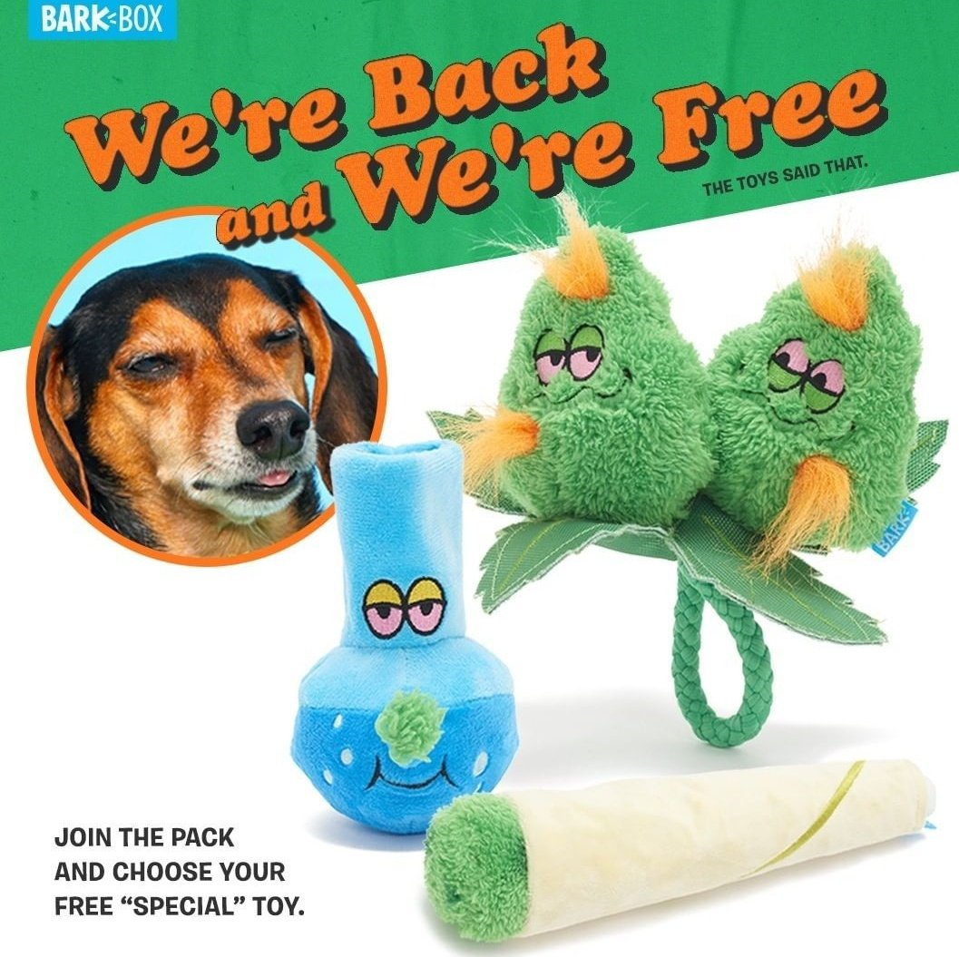 What the hell is going on over at BarkBox https://t.co/sU5azCUpzN