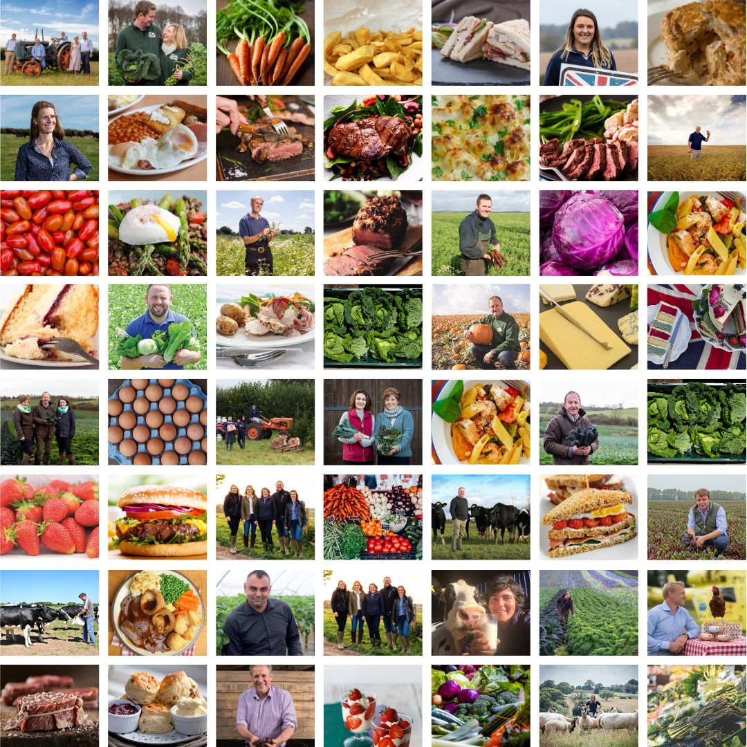 Let's spread the word about the people behind the food we love. RT if you think British farmers do an amazing job 🥚🍅🍆🥓🥦🥔🍠🍒🍞🧀🥩🍗🍓🍏🥛 #BackBritishFarming https://t.co/jzA7I7fbe1