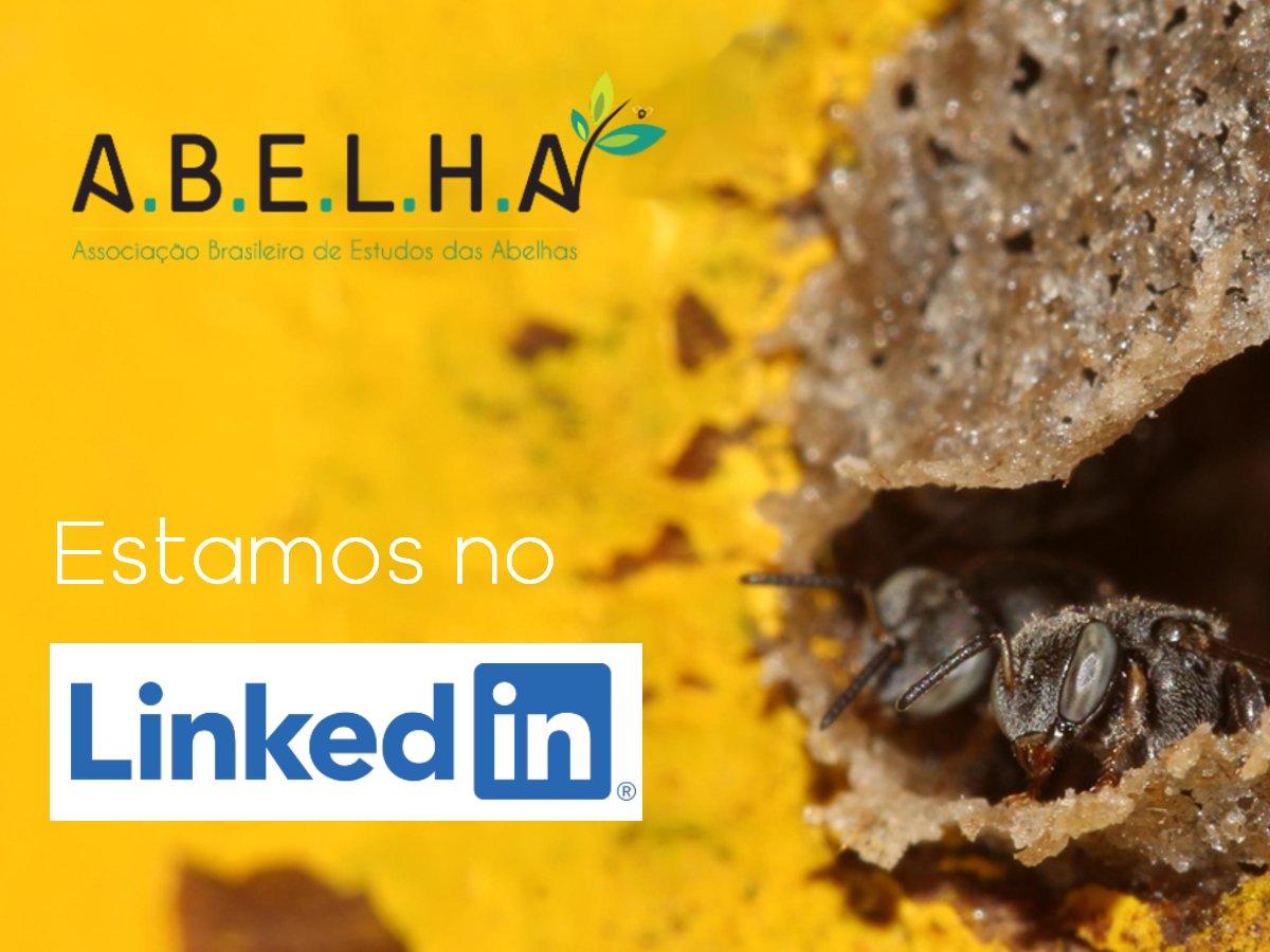 A.B.E.L.H.A. lança página na maior rede corporativa do mundo para levar aos tomadores de decisão e a uma nova geração de profissionais sua mensagem sobre a relevância dos polinizadores para uma agricultura sustentável.  Siga a nossa página no LinkedIn: https://t.co/O5KfIfR7Iz https://t.co/9AKKVAVK2z