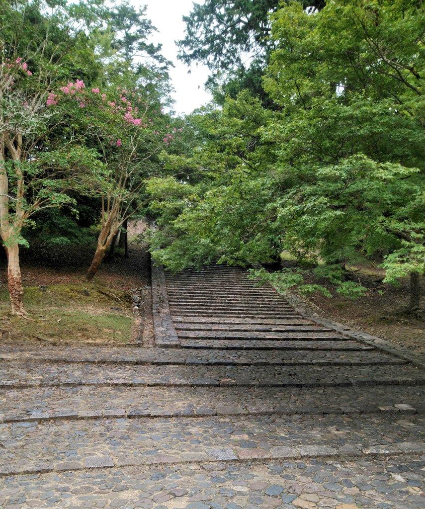 これは東大寺境内にある「そこで転ぶと猫になる」と言われているらしい猫坂(猫段)。人生がどうにもならなくなったらここで転んで猫になるつもりだったのですが、意外に急だし長いしちょっと怖くなりました。