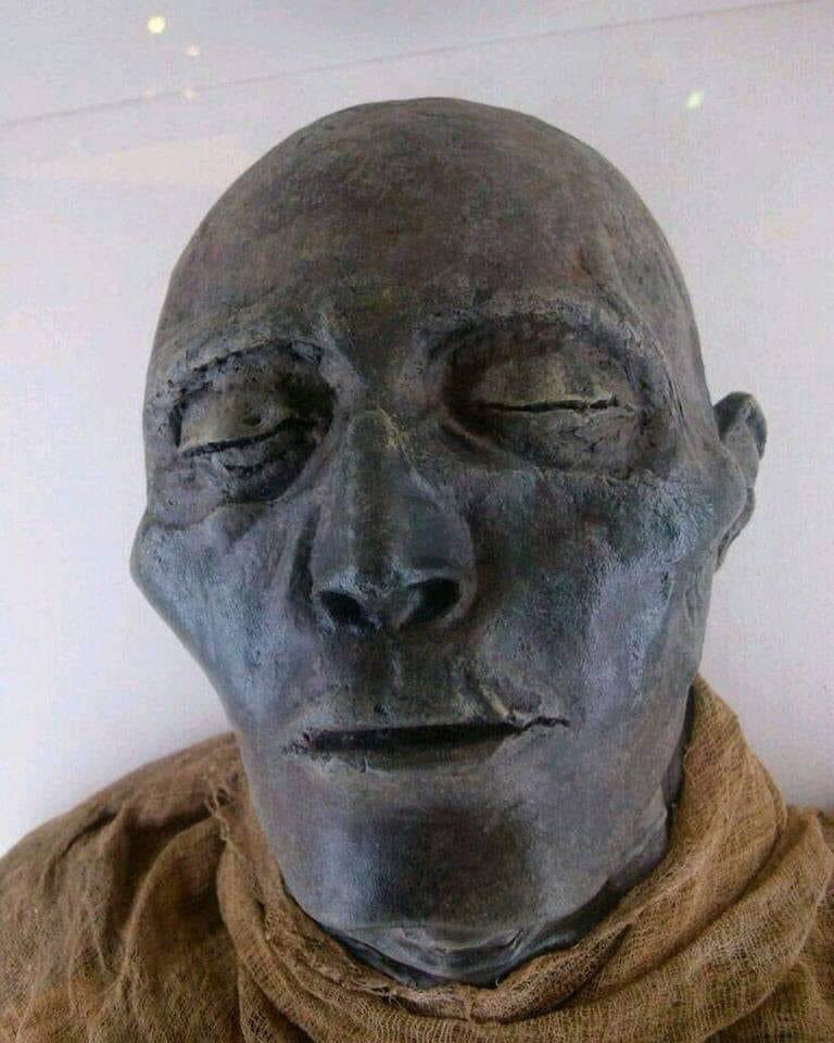 This is the face of Seti, one of the most well preserved mummy in all of Egyptian history. He was black and not Caucasian.  Menmaatre Seti (I), was the Pharoah who returned Egypt to its lost glory of the 18th dynasty. He led military campaigns and expanded the Egyptian empire. https://t.co/aCXYtYzFqf
