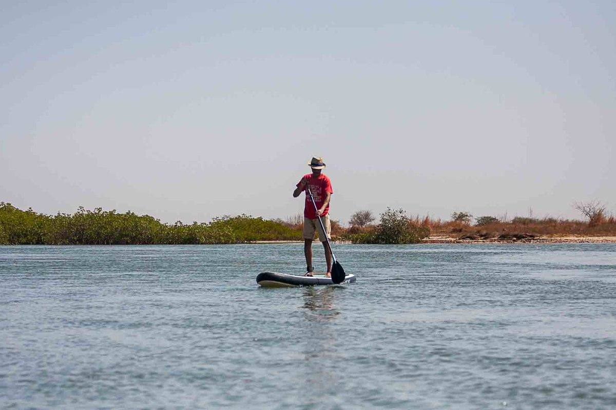 Paddling on the Saloum river in Senegal. With style! #ecotravel 🌍♻️How about you? Would you paddle there?  #MeetAfrica #SpreadPositiveNarrativeAboutAfrica #seeafrica #responsibletravel  #senegal https://t.co/If58GWNj6K