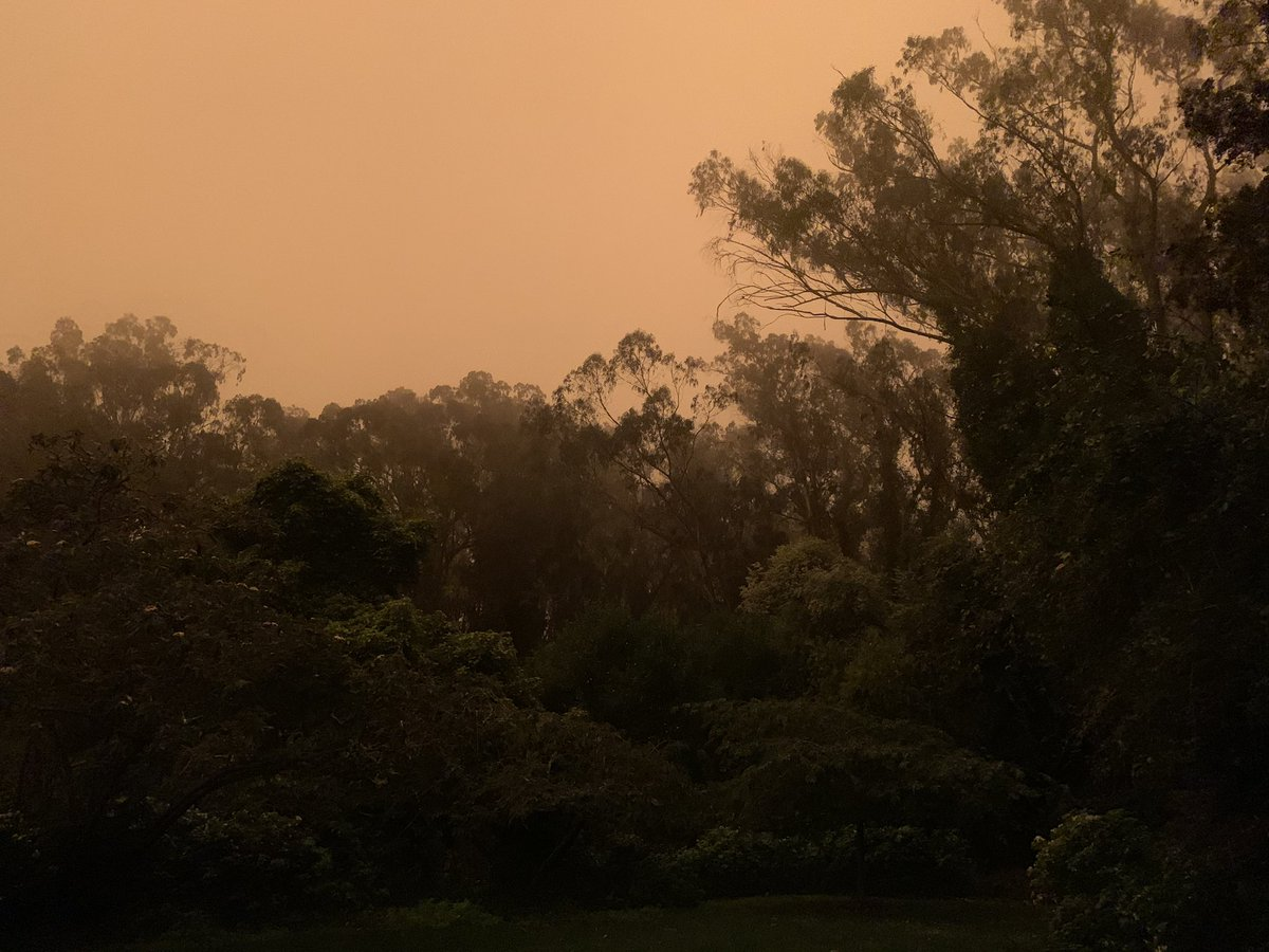3 hours after sunrise. Feels apocalyptic. Praying for everyone's safety near the wildfire. 😢
