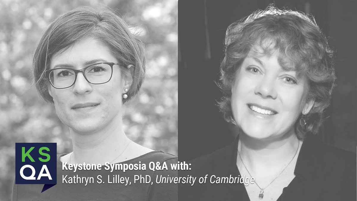 In an exclusive interview with upcoming #Proteomics eSymposia co-organizer @lilley_ks, @EMBOPress discusses Dr. Lilley's vision for the meeting, election to @EMBO & future research directions.   Video in link & remember to register for #VKSProteomics21  https://t.co/IzIY5EPhtO https://t.co/b72Oea5fcp