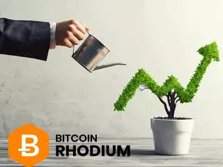 Keep filling your $XRC wallets, its very scarce and rare.! Patience pains but #Pays its not all about #Pump and #Dump  #Bitcoinrhodium team is doing a lot, #FreeMarketOne a decentralized market for precious metals and more! #Hold your #XRC and exchange them for #Gold on #FMO https://t.co/3a4tSyWk75