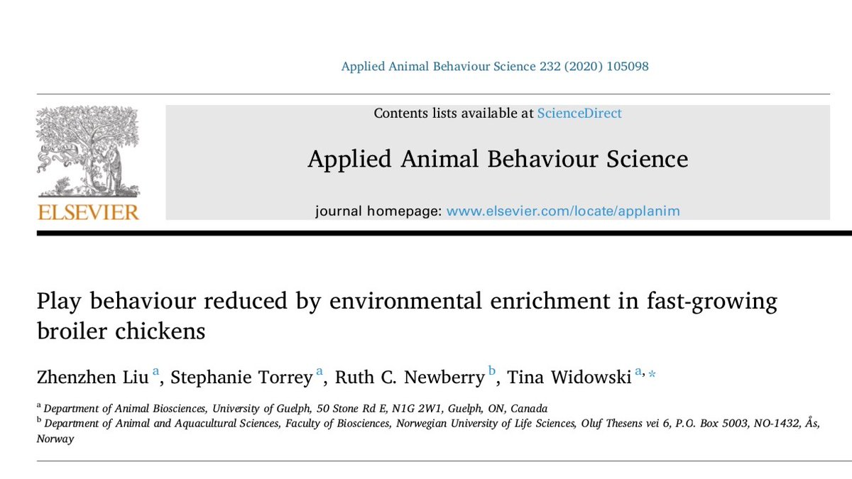 """🚨 Cool new paper alert! 🚨  """"Play behaviour reduced by environmental enrichment in fast-growing broiler chickens"""" by Zhenzhen Liu, who was supervised by Tina Widowski and @stephtorrey  🐔  It's #OA for a short time - so get it now! https://t.co/0MjTkQCYIW  Details below 👇 https://t.co/UQwbOnLRbV"""