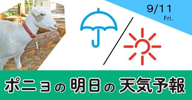 佐倉 市 の 天気