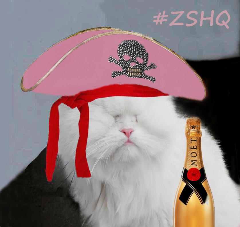 Arrrr me hearties.. it be poirate week! #ZSHQ https://t.co/bLZM6k7yNB