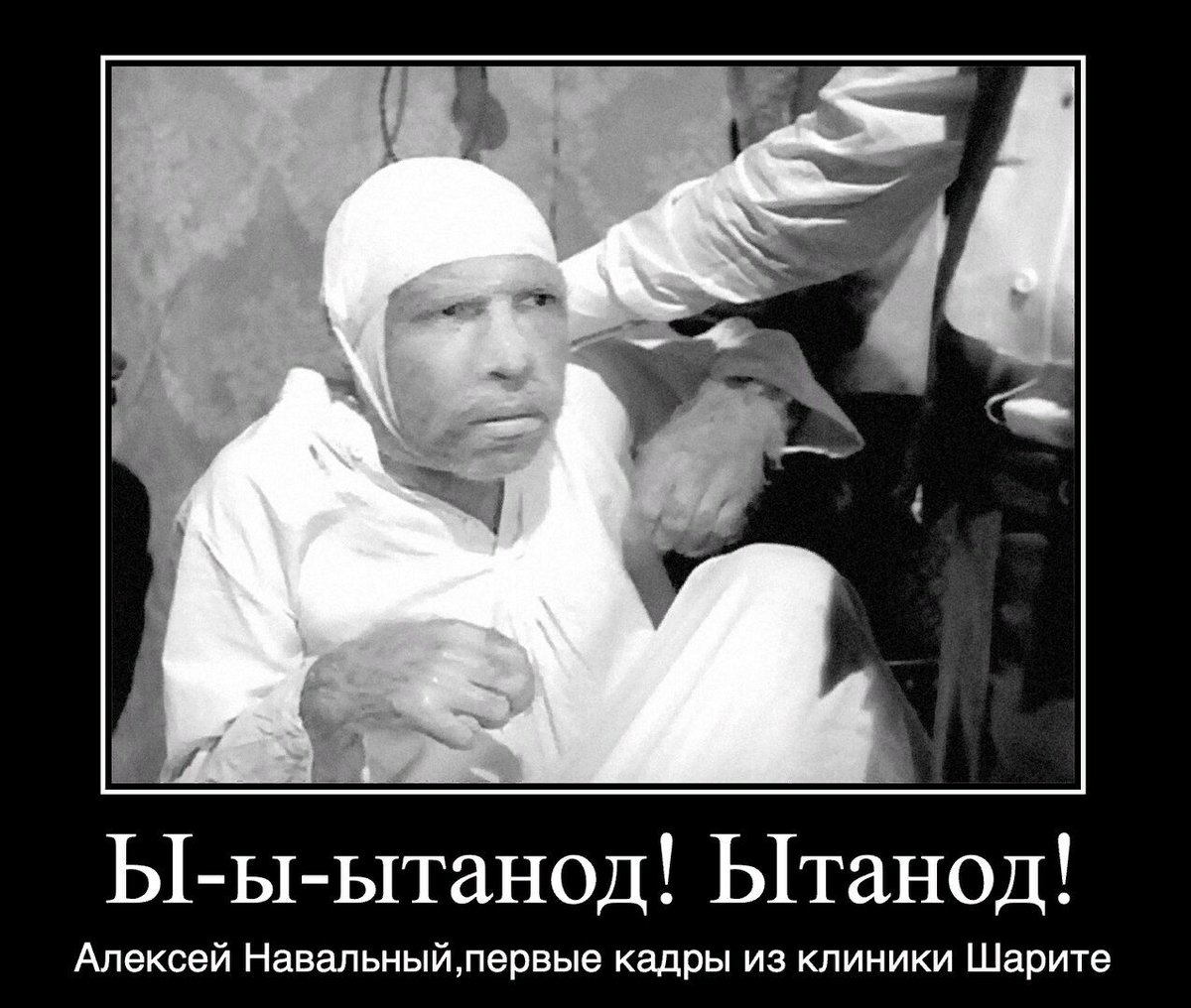 "Кац-президент! on Twitter: ""… """