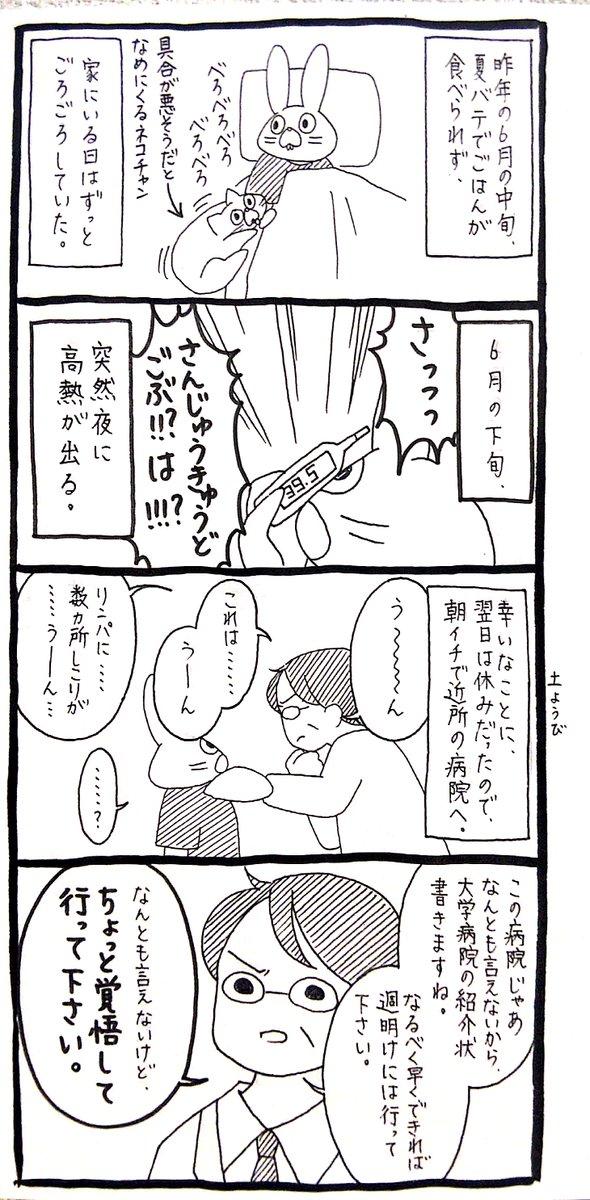 【うさぎ】去年の夏に高熱を出してタヒを覚悟した話(ナガイヨ!!!)