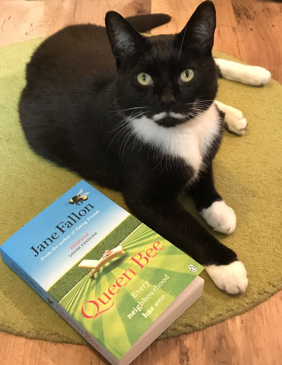 HAVE U GOT UR TKT for THE BEST Literary event of the year!? TONIGHT, THURS 10 SEPT at 7pm UK TIME, in aid of @themayhew - An evening with @JaneFallon! 😺💖📗  And, it's an ONLINE EVENT so u don't even have to leave ur sofa! 😹  #QueenBee #promocat #OllieAid  See link below 😺💖⬇️ https://t.co/HXZOmxBIFa https://t.co/R5sHP8QXXw