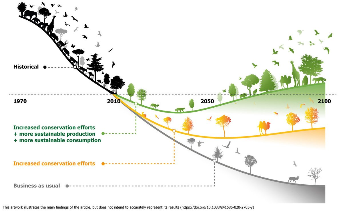 We can reverse the loss of nature! But only if conservation efforts are complemented by transformation of food systems. The more urgent & deeper the changes, the earlier we can 'bend the curve'!  Great 2 collaborate on this paper in @NatureNews   https://t.co/F574H7yVzF https://t.co/Z0ppxZ0iig