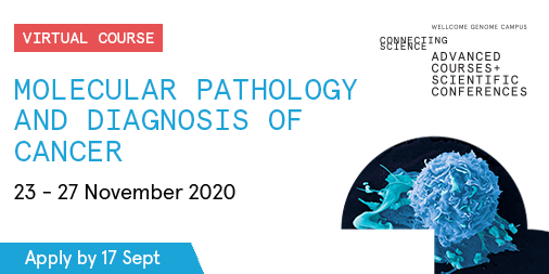 Are you a clinical scientist considering a career in #genomic #cancer medicine? This Molecular Pathology & Diagnosis of Cancer course might be for you!   Gain interactive training in current molecular methods for cancer diagnosis.   📩Apply by 17 Sept: https://t.co/QGohuKIRR9 https://t.co/70yOdailo6