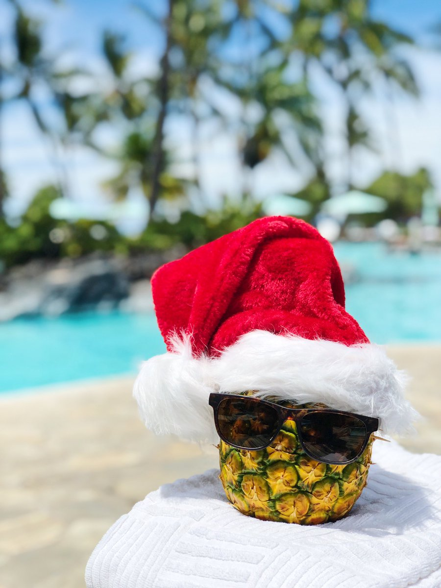 Who'd love to fast forward to a glorious holiday season in Hawai'i?#HolidaysAtTheOrchid #HolidayCountdownBegins https://t.co/DIf80gte8M