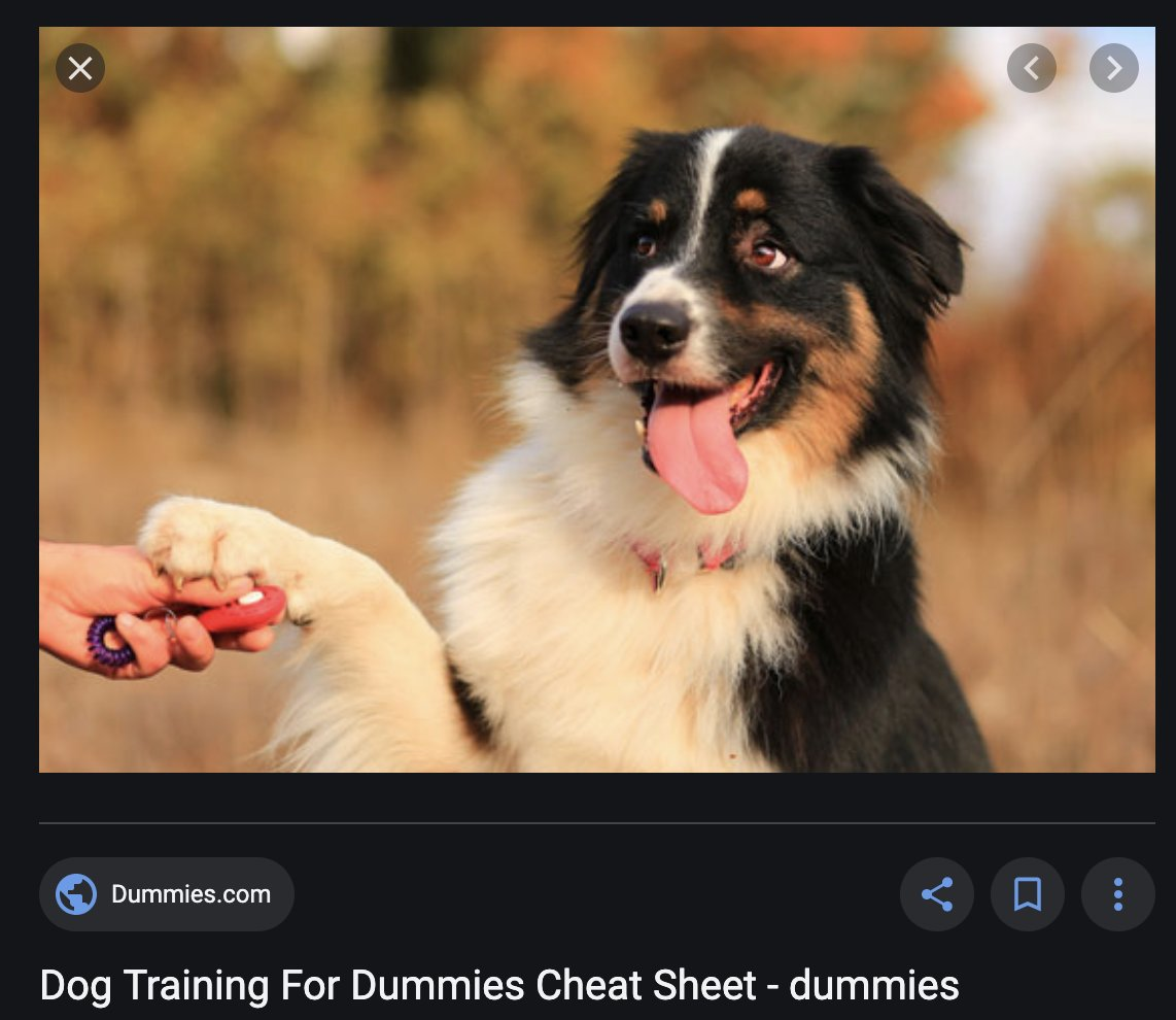 Was googling 'dog commands' for a thing and when I saw this I thought the 'dummies' was referring to the dog. https://t.co/3Mx0lmhN2N