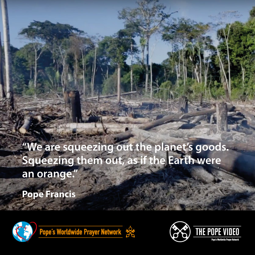 We need to recognize that we haven't been caring for creation responsibly. @Pontifex never tires of repeating it: we have to change our relationship with the planet. #SeasonOfCreation @popesprayernet @VaticanIHD @Gasmuha @CathClimateMvmt @SeasonCreation youtu.be/Ziryacd5vIw