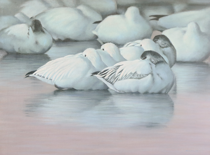 The 45th annual Birds in Art exhibit begins on 9/12 at the Leigh Yawkey Woodson Art Museum & IncredibleBank Foundation is pleased to be a Presenting Sponsor. Read the latest about Timothy David Mayhew, this year's Master Artist and other information about the exhibit. https://t.co/7oO5h9f8pS