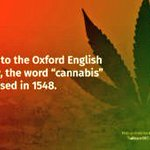 Image for the Tweet beginning: Facts 💯💚 #Cannabis