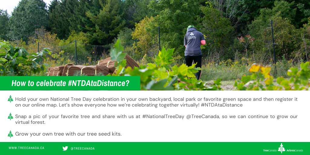 This year, #NationalTreeDay will be different. But, what isn't different is why we celebrate #trees! If you need inspiration, we've put together a list of 10 easy alternative ideas to commemorating this special day!#NTDAtaDistance 🌳 https://t.co/FVgo58Dp52 https://t.co/RxGADWR8LR