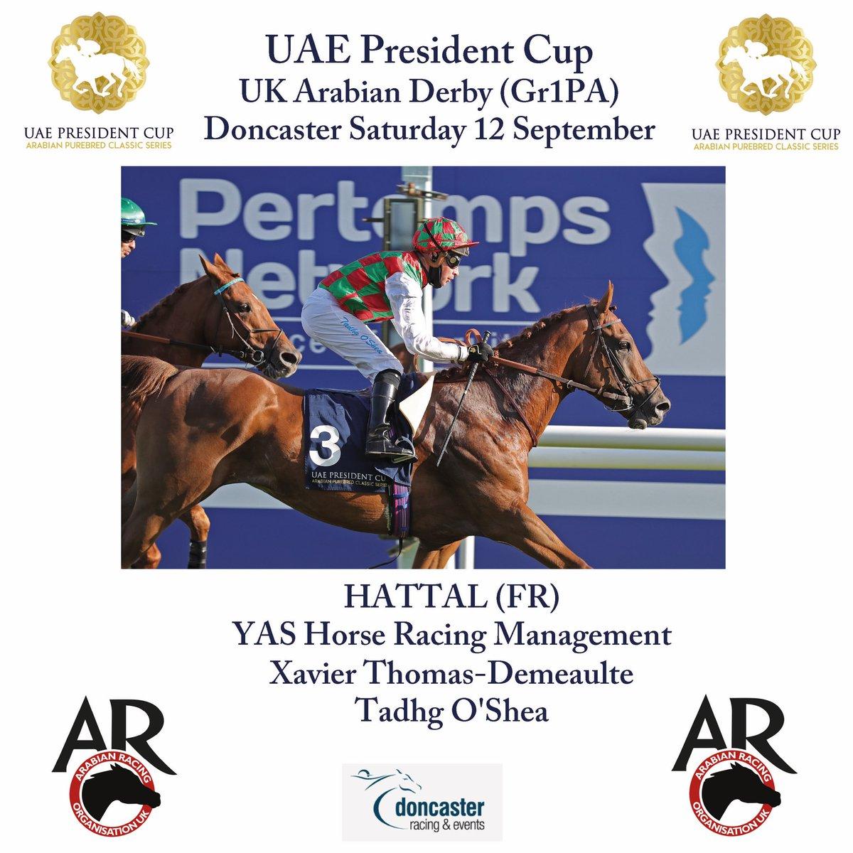 HATTAL 🇫🇷 (Mahabb) @OsheaTadhg #YAShorseracingmanagement #xavierthomasdemeaulte #winners 🏆🏇@UAEPresCupRace #UKArabianDerby @DoncasterRaces @ArabianRH @TheFrenchPA @BHAPressOffice @afac_contact @DubaiRacingTV @larawathbastud @BHAPressOffice @rpbloodstock @ArabFinishLine