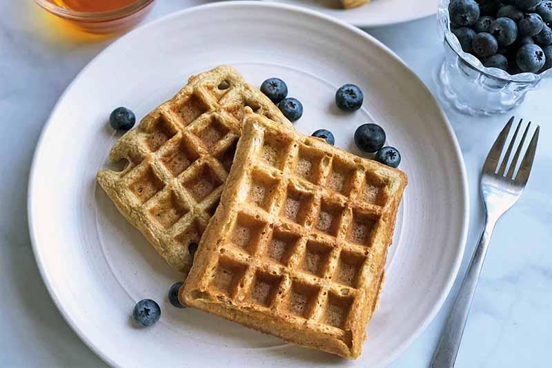 Spelt Belgian Waffles Are Fluffy and Delicious! >>> https://t.co/3syJRaoWKV #belgianwaffle #spelt https://t.co/hw4DkjozKp