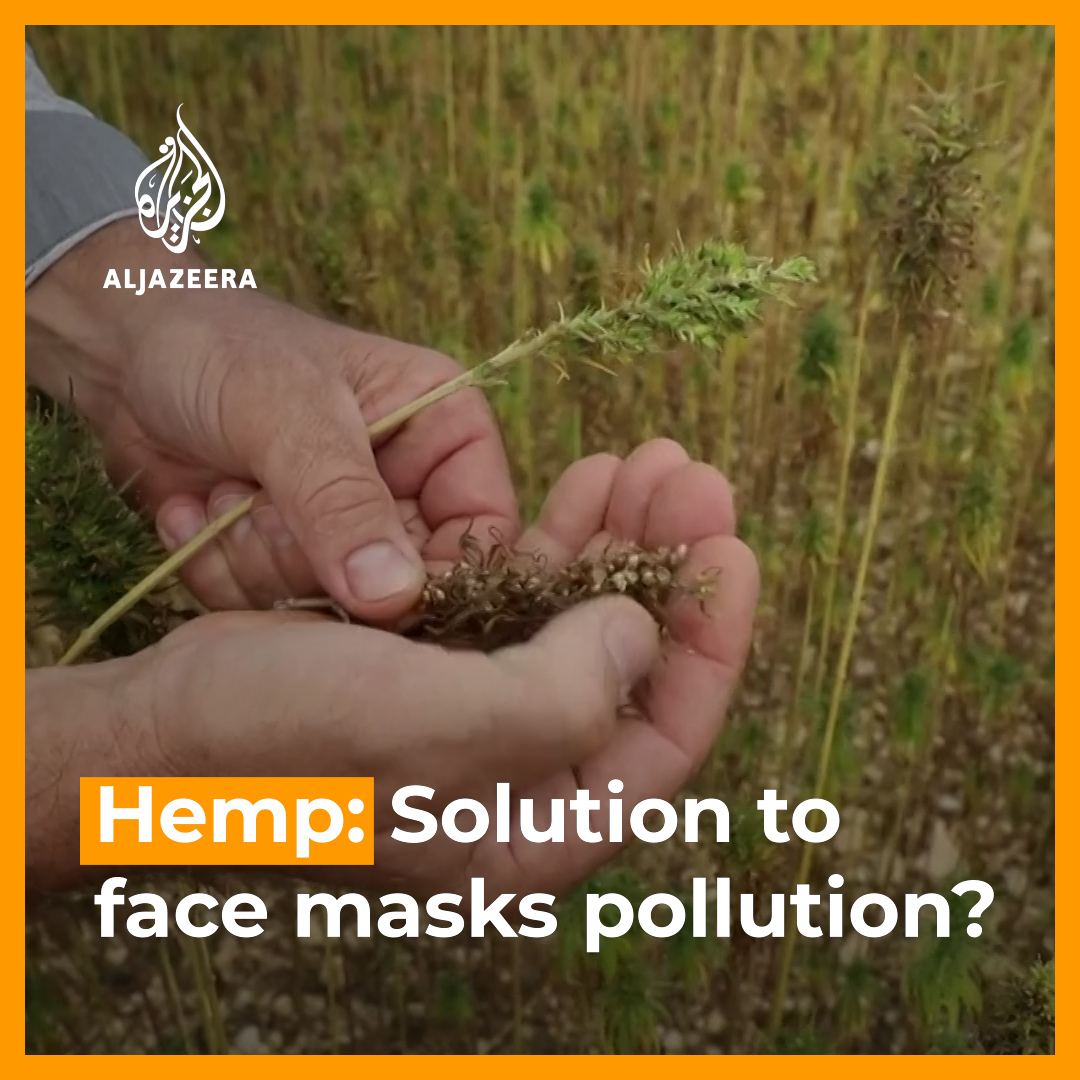 A factory near Paris says it has produced Europe's first compostable face mask - using hemp. https://t.co/erTbo3LBO9