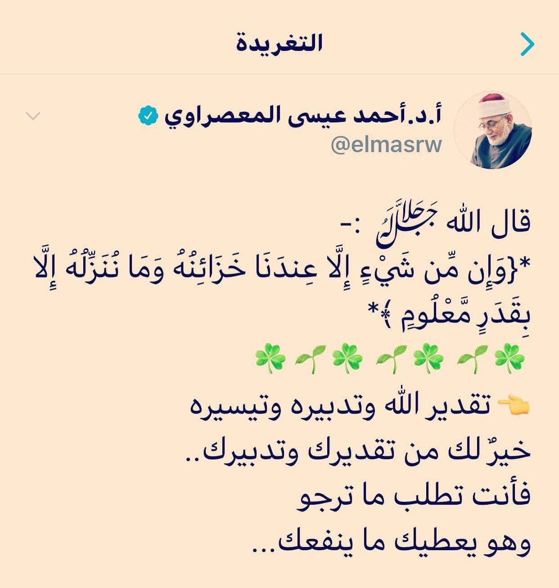 مصطفى رمضان أحمد En Twitter 13