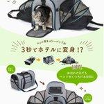 amazonで買ったペットキャリーバックがおすすめ!必要に応じて広げられる!