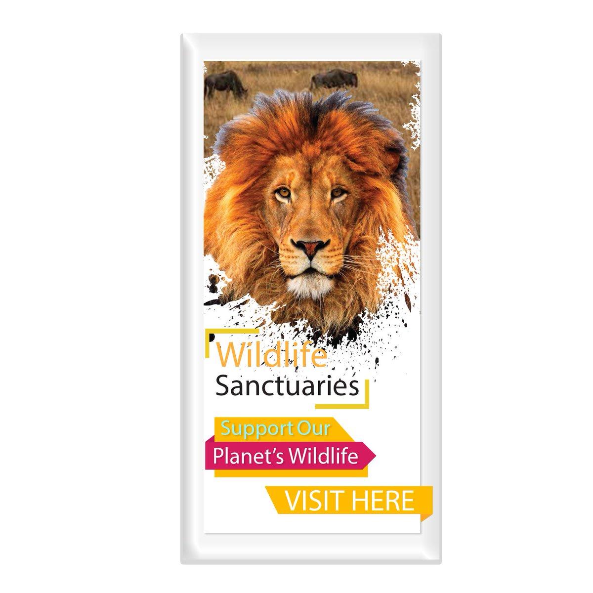 Adopt or support Endangered Wildlife  -#wildlifetour #endangered #StopExtinction #reptiles #environment https://t.co/UC8yD5SDER https://t.co/x46BN0MAfr