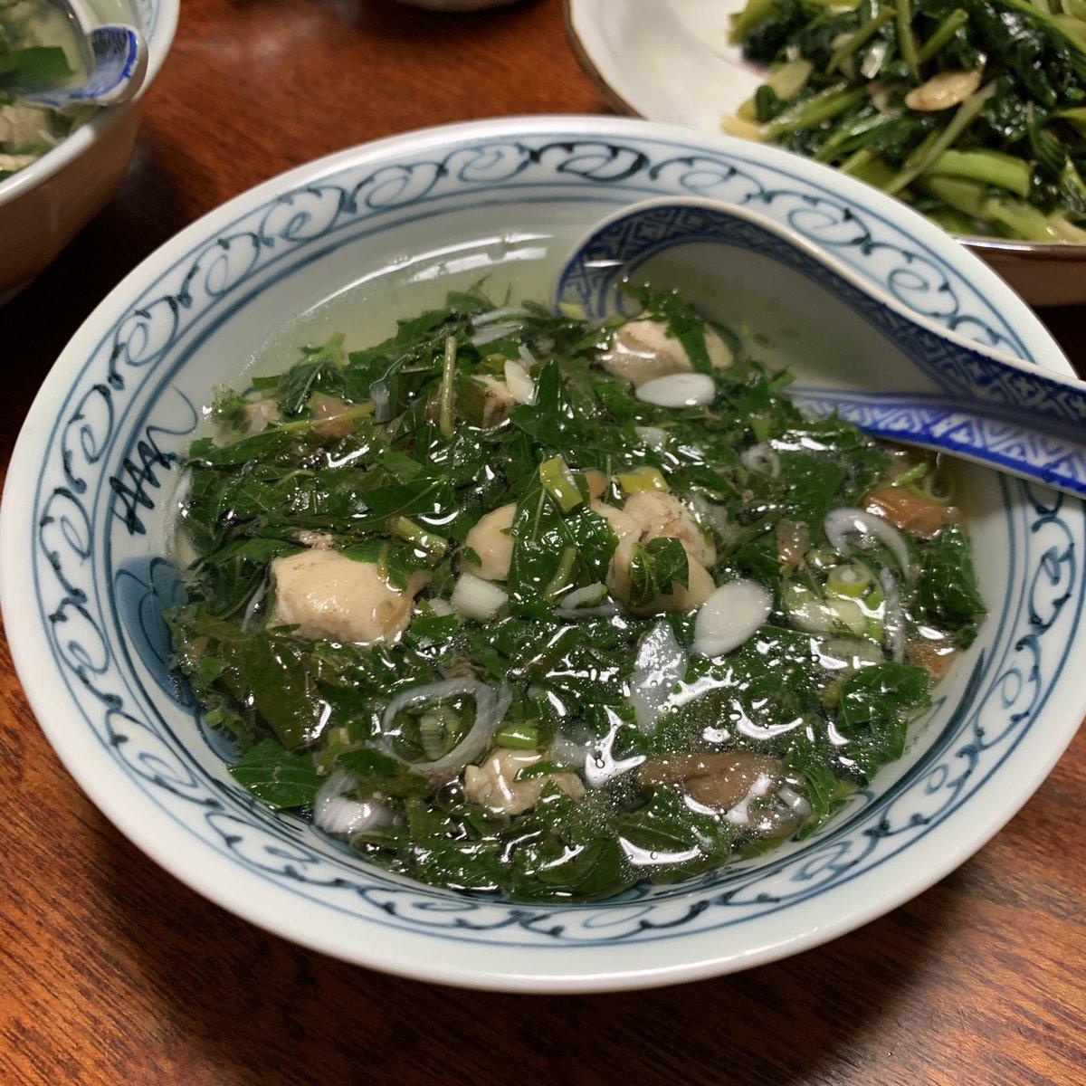 麦茶スープが美味しすぎて、今度は採れたてモロヘイヤも薬味として熱々チキンスープにどっさり入れてみました。梅以外、ネギ、大葉も採れたてです。薬味どっさり、うまみたっぷりチキンスープ|有賀薫 @kaorun6 |スープ・レッスン #家庭菜園 #スープ365