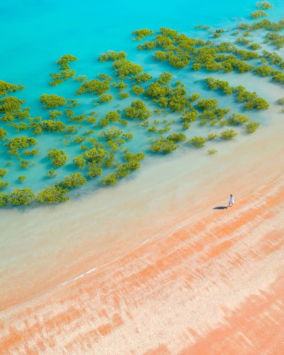 You can always count on @WestAustraliato brighten up your day!   IG/sailor.jay captured a lone beachgoer at #RoebuckBay, walking along #Broome's famous vibrant red sand in Yawuru country of @austnorthwest.  #seeaustralia #wanderoutyonder #australiasnorthwest https://t.co/ml8EFfROIi