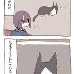ふと見ると「飼い猫が日本語を練習していた」時の話し。このネコもしかして・・。