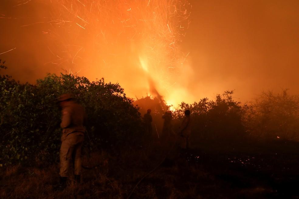 Enquanto perdoa R$1 bilhão de dívida de igrejas, o governo corta verbas do combate para prevenção de incêndios florestais.  A destruição bate recordes. Fauna e flora com perdas incalculáveis.  A quem esse governo serve? https://t.co/D5KVcEfUbb