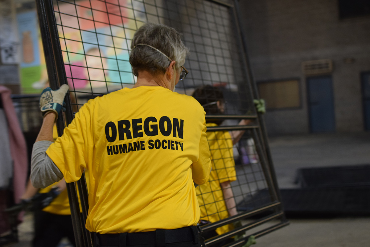 If you've evacuated and need support for your domestic animals, call us at 503-285-7722 and press 0.  More info here: https://t.co/FRQjuRaGV8 In the pics, our emergency animal sheltering team is assembling kennels at Oregon State Fairgrounds in Salem.   #ohspets #oregonfires https://t.co/of8JUOKNDd