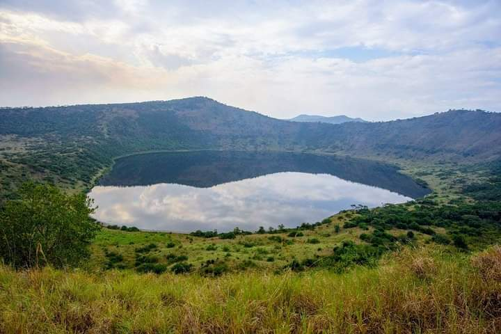 Mind calming sights that are not seen anywhere other than #uganda. #visituganda #pearlofafrica #ugandasafari   #photography #craterlakesafari #scenery  #vegetation  #grouptours #privatetours #cultoursandsafaris #BBNaijaFinale 🌐https://t.co/kLrB3Q2316 📞+256 705087906 https://t.co/1qNEXfUcK0