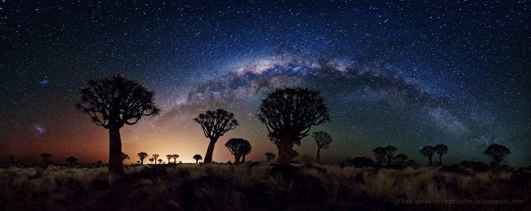 #Space: #MilkyWay (and #MagellanicClouds) over Quiver Tree Forest, #Namibia. #GoodMorning! https://t.co/rEjxPMlm8e via @apod https://t.co/K0BopSFBnQ