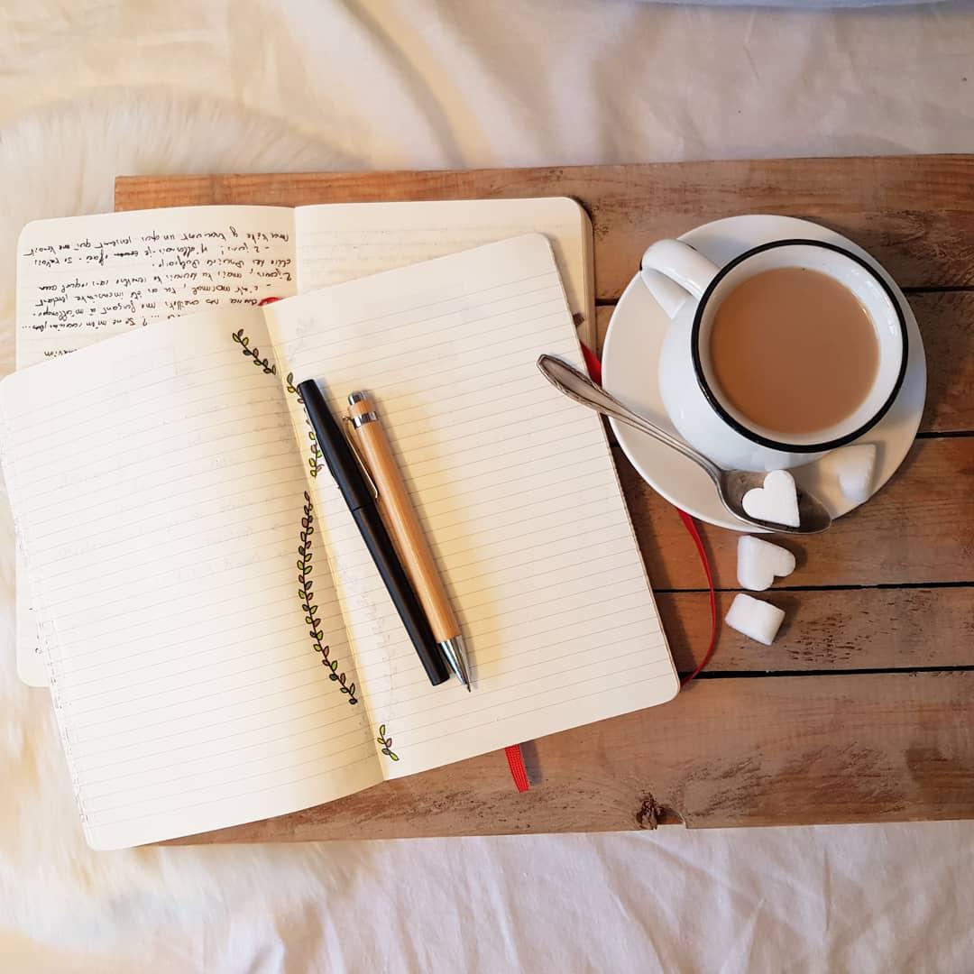 La semaine passée a été éprouvante, parfois j'ai envie de tout envoyer bouler, tout sauf mon écriture! Parfois j'aimerai avoir le loisir de ne penser qu'à mes livres, qu'à mes personnages, qu'à mes écrits.  Avez-vous aussi ces crises, amis auteurs ? #writerslife #authorlife https://t.co/oCfXel4iY7