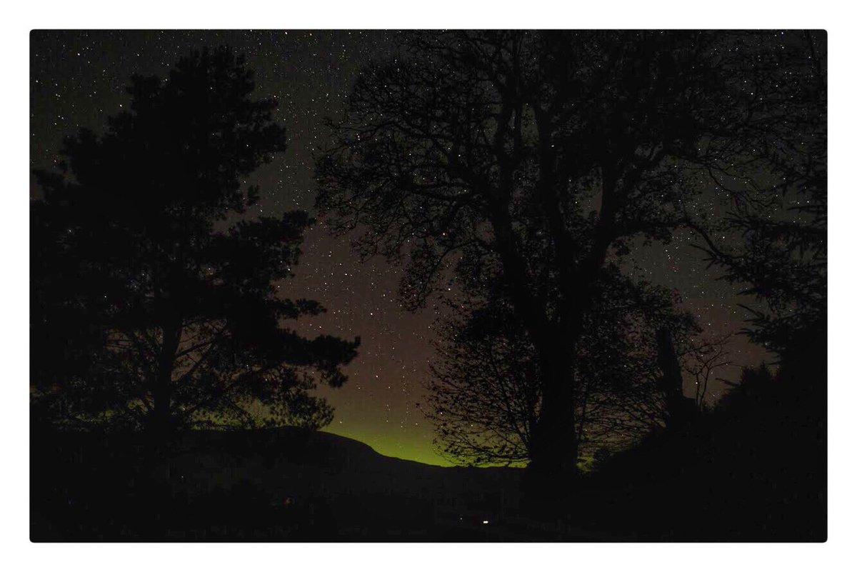 Look what nature served up in the glen last night.  Yippee it's #aurora season again #northernlights #darkskies #astrophotography #glendaruel #argyll #argyllsecretcoast https://t.co/Wy92E5eZEb