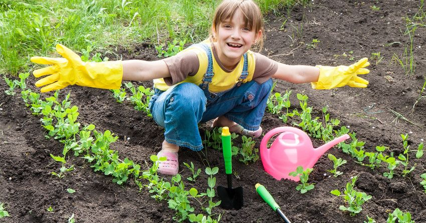 Capital Gardens Launches Kids Gardening Guide | Capital Gardens https://t.co/mhMFQUyzAV #sidcup #EstateAgents #Property #RealEstate #homes #house #houses #renters #forsale #BuytoLet #houseforsale #market #markets #PropertyMarket #landlords #NewHome #Househunting https://t.co/5B3LVAwql7