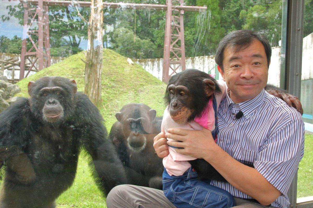 天才!志村どうぶつ園をご覧いただきありがとうございます。志村園長をはじめ、たくさんのゲストの皆様・スタッフさんに支えて頂きました。これからもパンくん、プリンちゃん、カドリーの動物たちを守り、育てていこうと思います。本当にお世話になりました。
