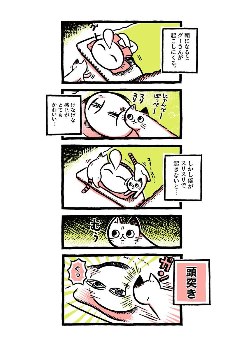ヨボヨボの迷い猫を保護したら…朝の起こし方【19】