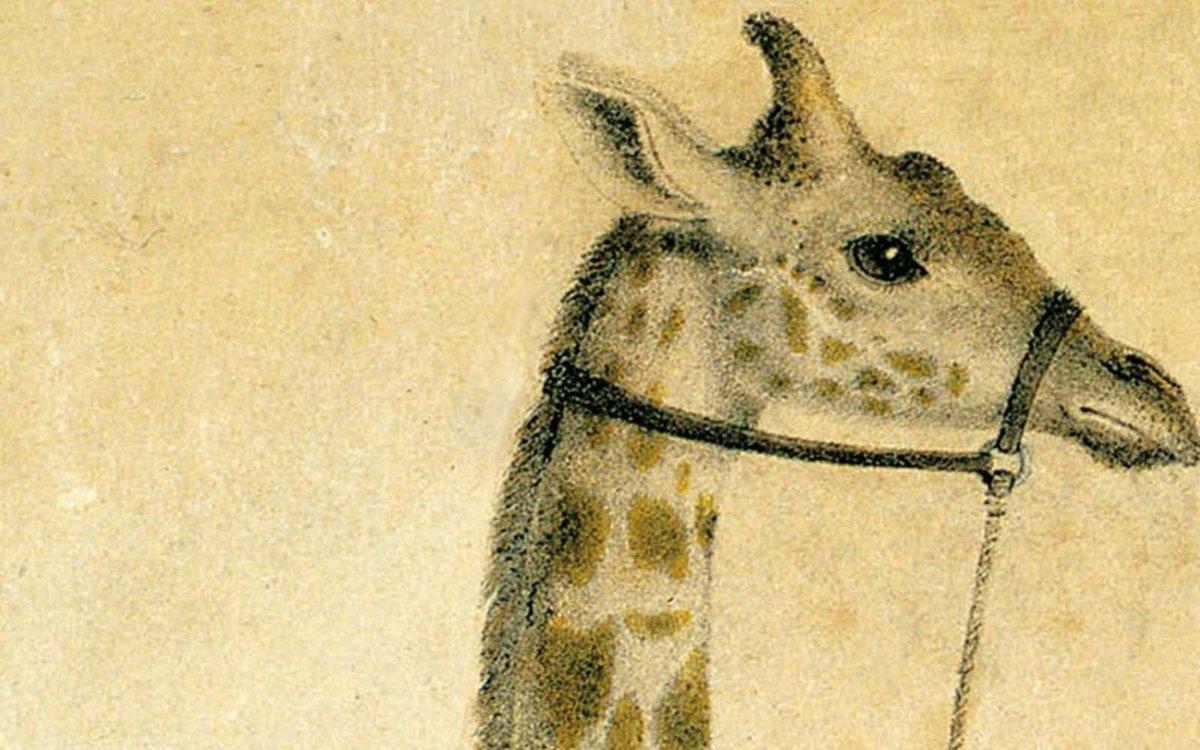 FRENCHNEWTECH Podcast : Zarafa, le périple d'une girafe à Paris https://t.co/LbofqCs2eU #science #innovation #futurasciences https://t.co/PkWGXXhgHU