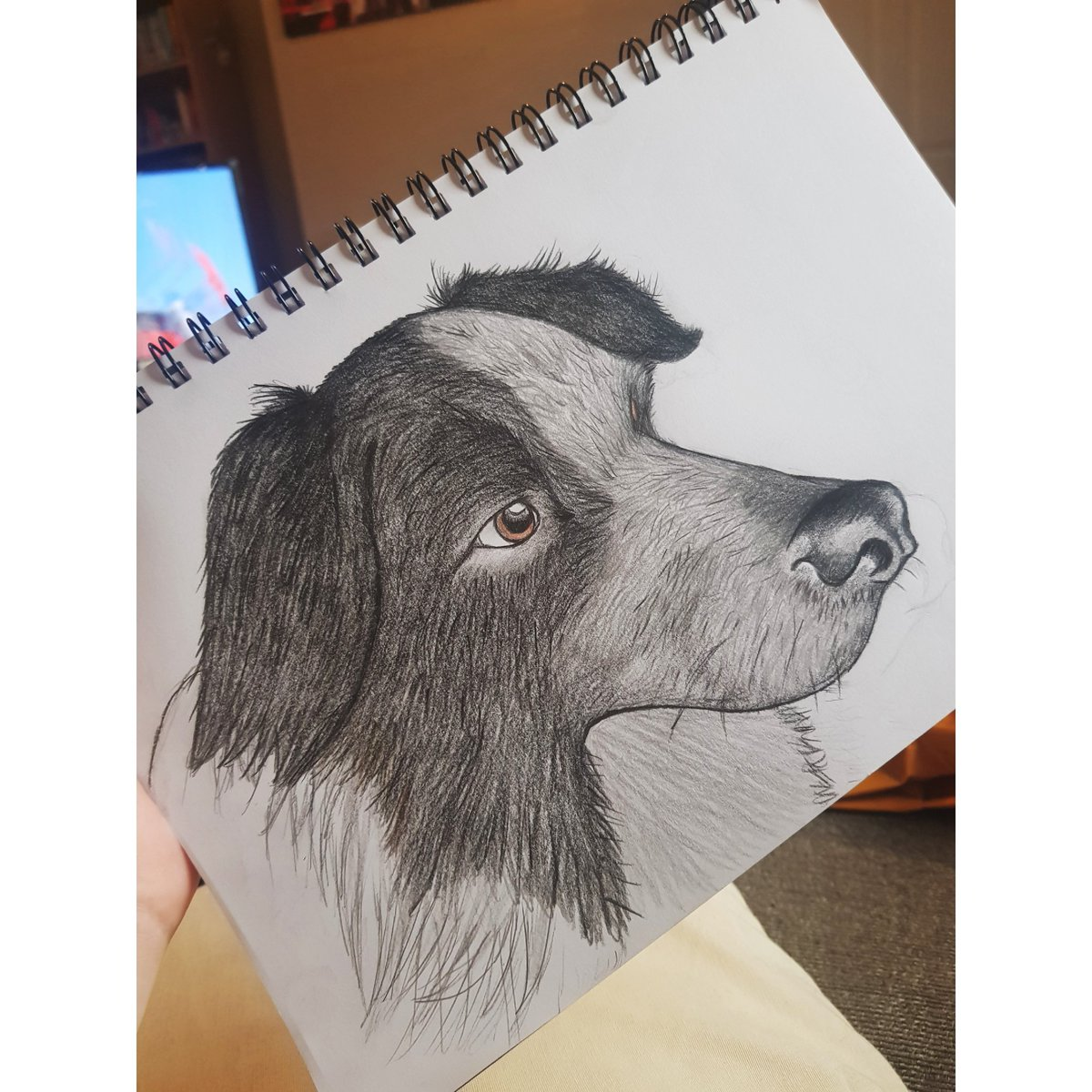 I've started trying to draw again and I'm getting in the practice on our dads doggos🐶🐶 #ArtistOnTwitter #drawingoftheday #dogsoftwitter https://t.co/0ZMvBeRv7n