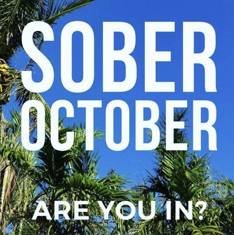 An idea...  I'm (obvs) gonna be #SoberOctober but have committed to working on my sobriety every day this October  I'll be doing tips, blogs, workshops, videos (maybe, if I'm brave) every day  Join me? I'll support where I can. Feel free to RT. DM ok  #Sober #RecoveryPosse #ODAAT https://t.co/A89a0AsU7g