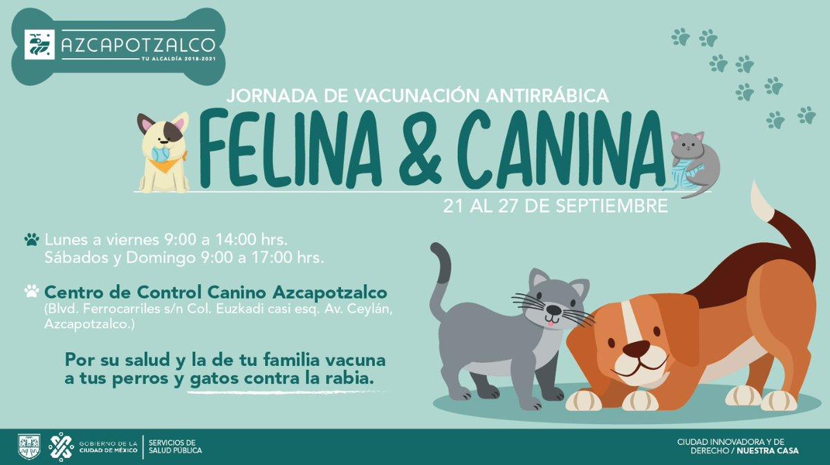 🐱🐶Lleva a tu mascota a la Jornada de Vacunación Antirrábica, cuidemos a nuestros compañeros de vida. #AzcapoParaTo2 https://t.co/YDtXaW2ldY