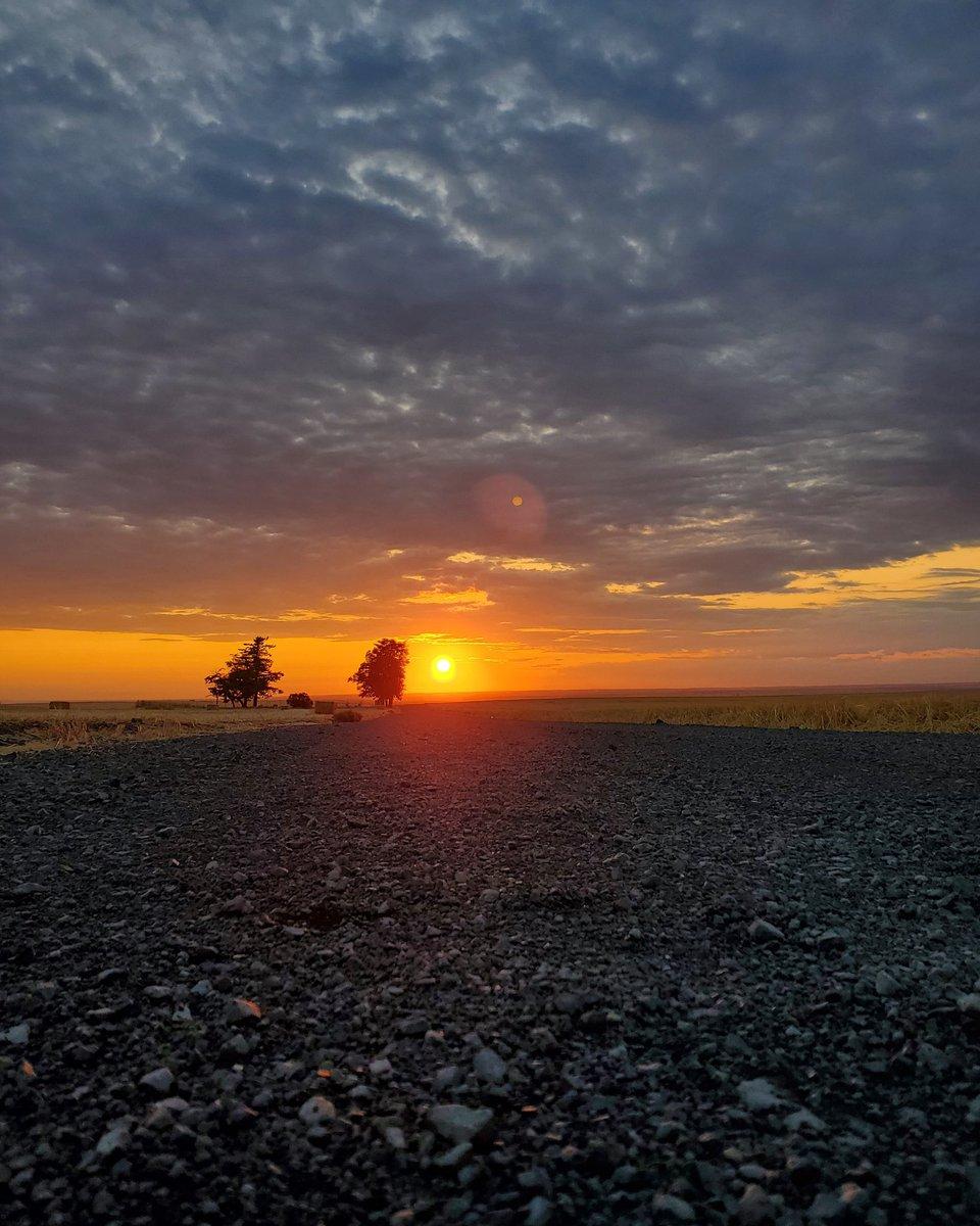 Filter free, the way Mother Nature intended. . #sunsets #sunsetphotography #sunset_hunter #sunsetchaser #orangesky #landscape #landscapecaptures #landscapephotography #naturephotography #dirtroad #gravelroad #pnw #pnwphotography #pacificnorthwest #easternoregon #perspective https://t.co/vmc4NwlJmg