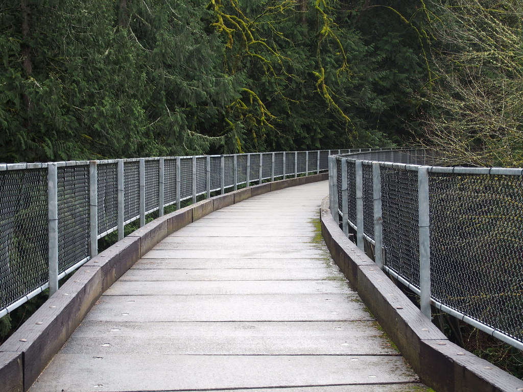 """""""Snoqualmie Valley Trail"""" https://t.co/vJZuuNdMS3 #bicycleinfrastructure #biking #bridge #cycling #forest #photog #photography https://t.co/NYfgvOn6KE"""