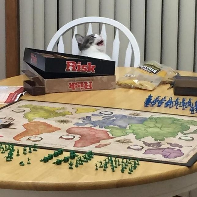 We are having game night at home, what are you guys doing?   #weekendvibes #catpeople #cat #catsofinstagram #cats #instacat #catstagram #catlover #meow #pet #pets #catoftheday #catsagram #catlovers  #weekend #friyay #picoftheday #fridayfeeling #weekendvibes #photooftheday https://t.co/WzmXzyXltv